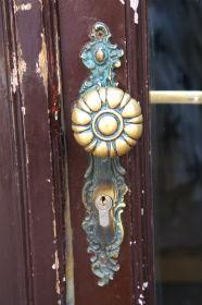 dörrknopp